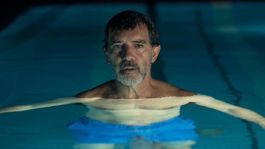 Antonio Banderas y Belén Cuesta, galardonados como Mejor actor y Mejor actriz protagonistas en los Premios Feroz
