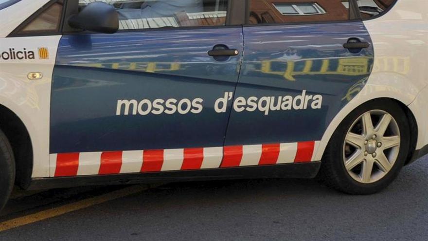 Los Mossos entran en 16 pisos en Sant Adrià por tráfico y cultivo de marihuana