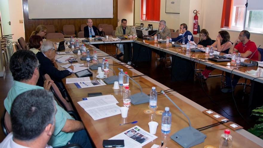 Pleno del Consejo Social de la Universidad de Las Palmas de Gran Canaria