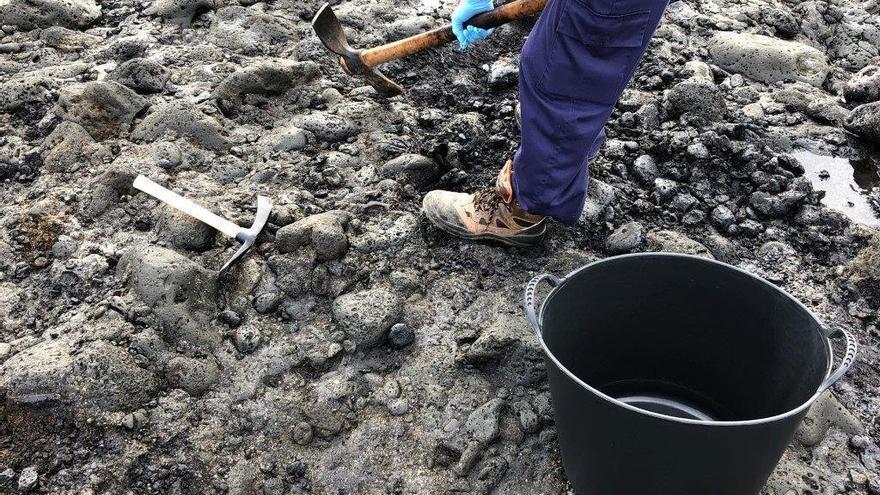 Trabajos de extracción de piche en la zona del Malpaís de Güímar, en Tenerife.