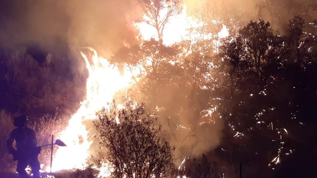 Un bombero del Infoca lucha contra el fuego
