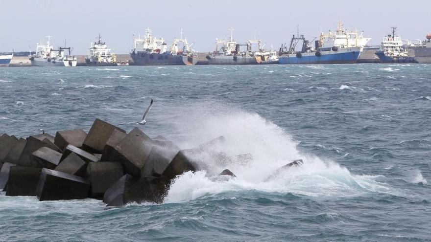 Temporal con fuertes olas en el puerto de Las Palmas. | Elvira Urquijo/Efe