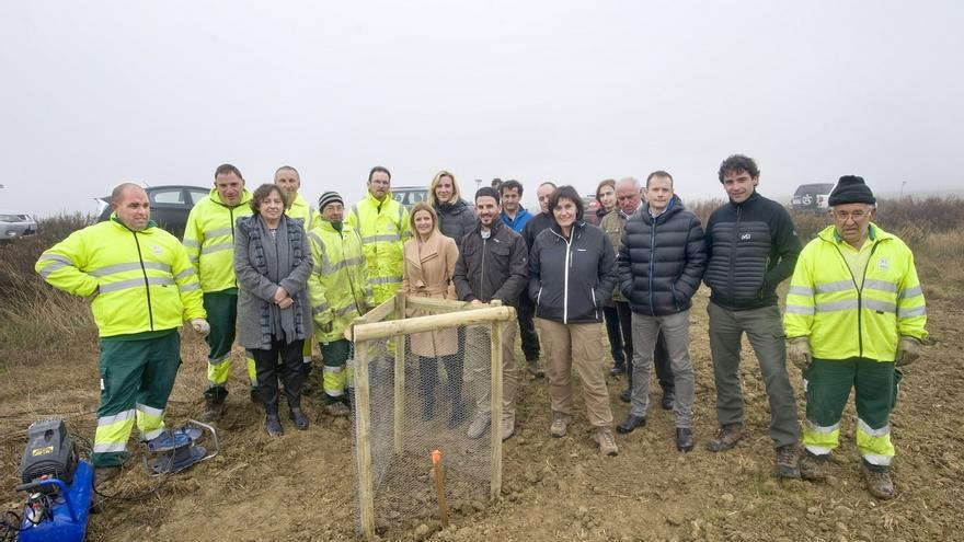 Medio Ambiente recupera 37 kilómetros de la Cañada Real de Tauste a Urbasa-Andia en Tafalla, Olite y Marcilla