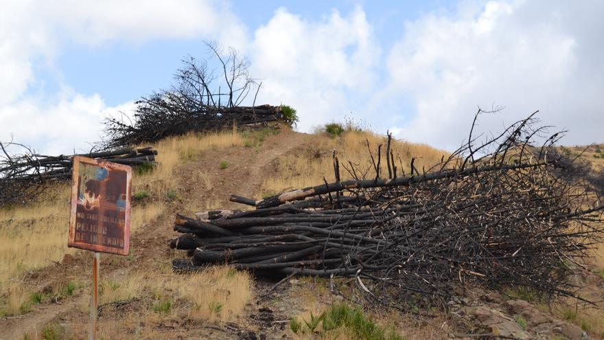 Una imagen del monte en Ojén, tomada en 2013   N.C.