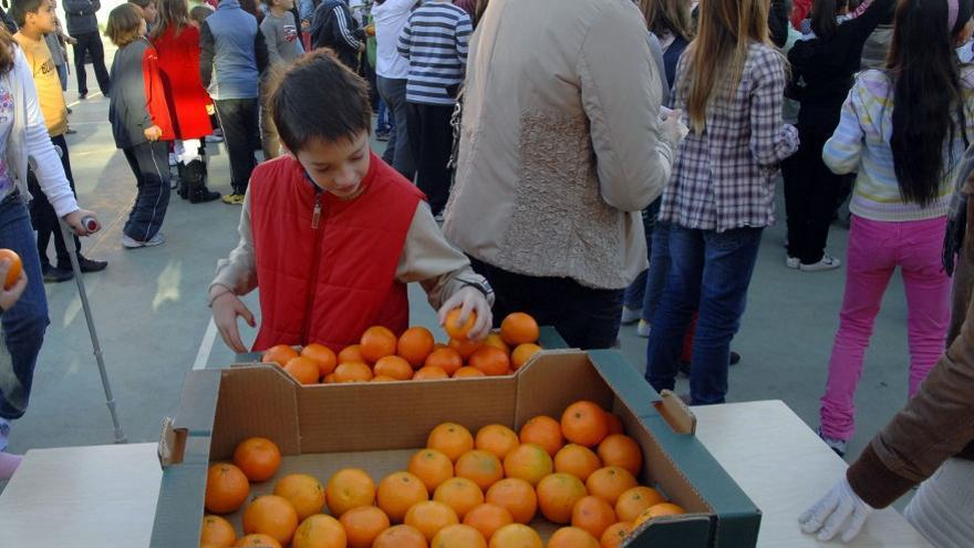Un niño cogiendo naranjas