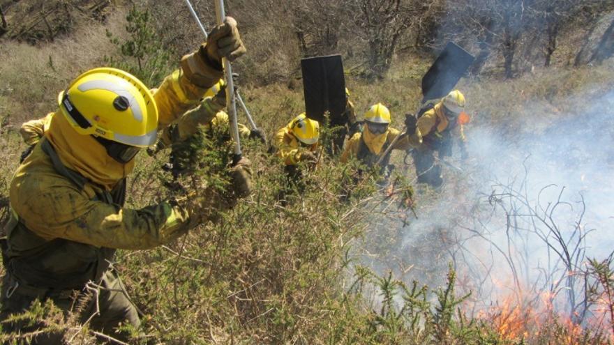 Operarios trabajando en la extinción del incendio de San Vicente de Alcántara (Badajoz) / Ministerio de Agricultura, Pesca y Alimentación @mapagob
