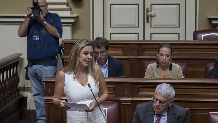 La portavoz del PSOE en el Parlamento de Canarias, Dolores Corujo, durante un pleno