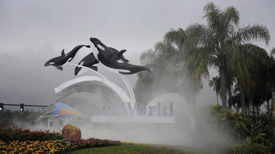 Los parques acuáticos SeaWorld anuncian el fin de sus espectáculos con orcas