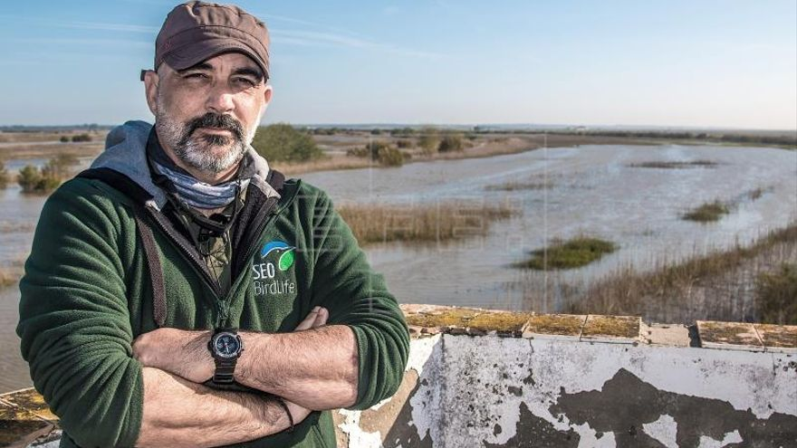 Limpieza de Aznalcóllar forjó el voluntariado ambiental, según SEO/BirdLife