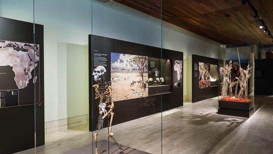 Museo Arqueológico Nacional: prehistoria/origenes