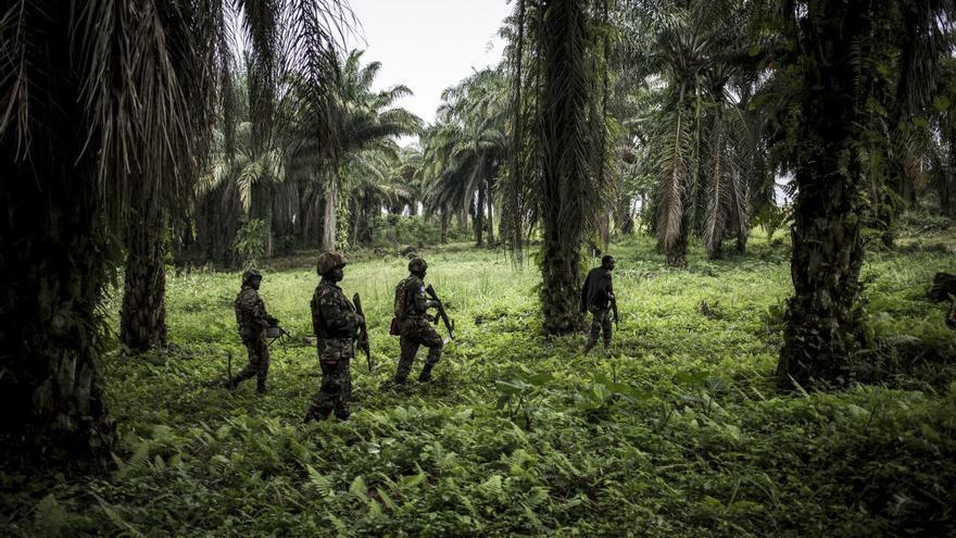 'Fighting Ebola and Conflict', serie ganadora del tercer premio en la categoría 'Noticias generales'. 183/5000 Beni, en el noreste de la República Democrática del Congo (RDC), se ha visto afectada por conflictos durante más de 25 años, y en 2018 también tuvo que lidiar con un brote importante del mortal virus del ébola.