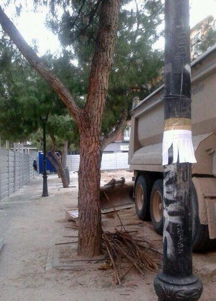 Maquinaria pesada bajo las raíces de los árboles   VHJ