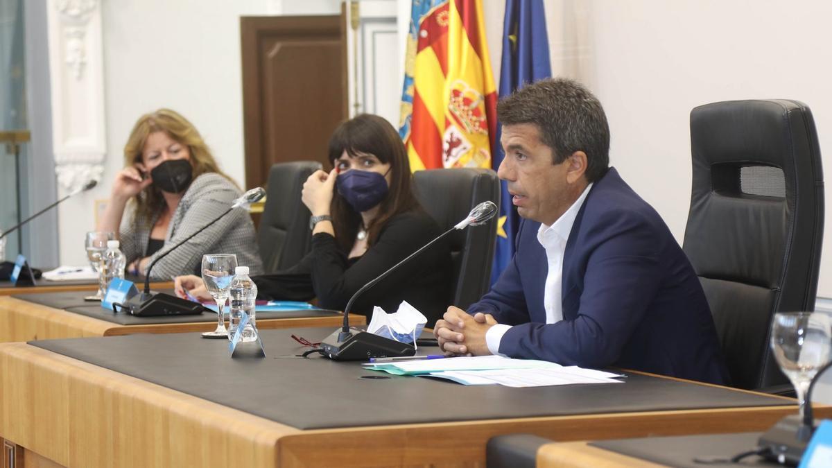 El presidente de la Diputación de Alicante, Carlos Mazón, durante un pleno.