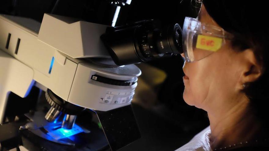 #EllasSonCSIC, una iniciativa para visibilizar a las mujeres de la ciencia
