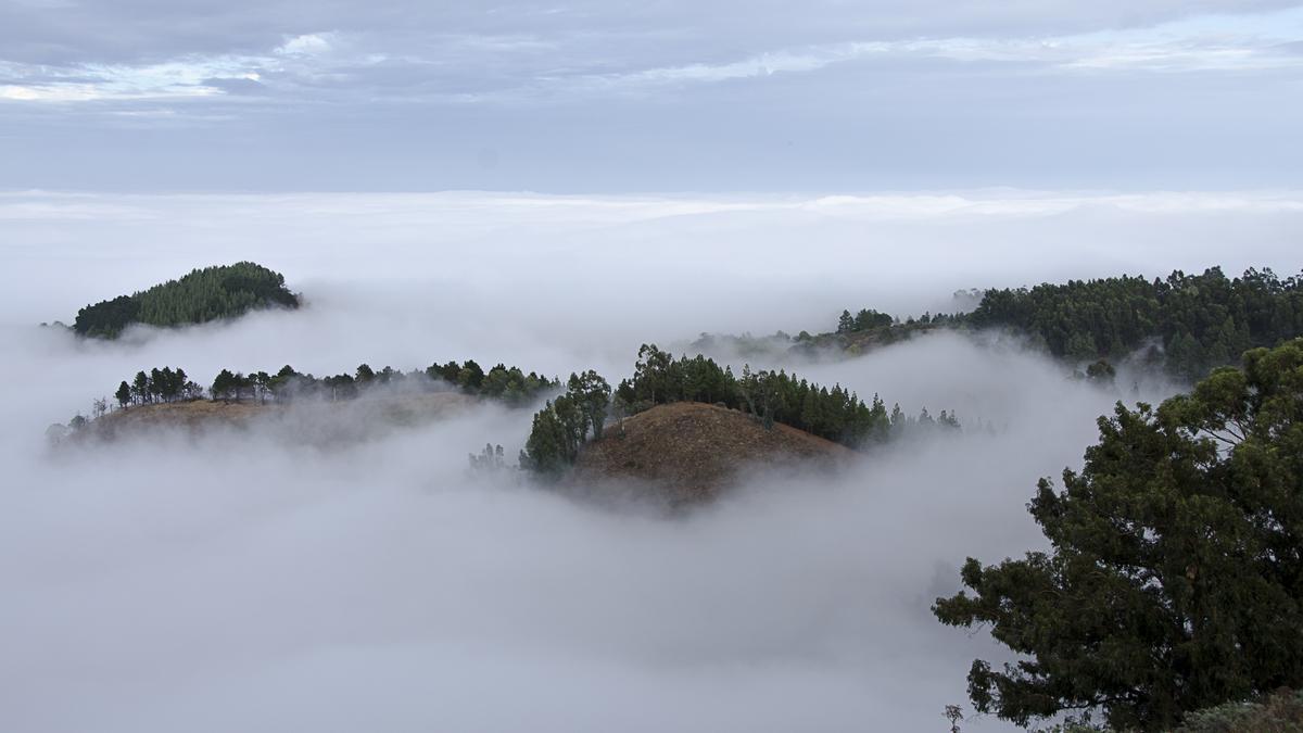 Mar de nubes desde Galdar