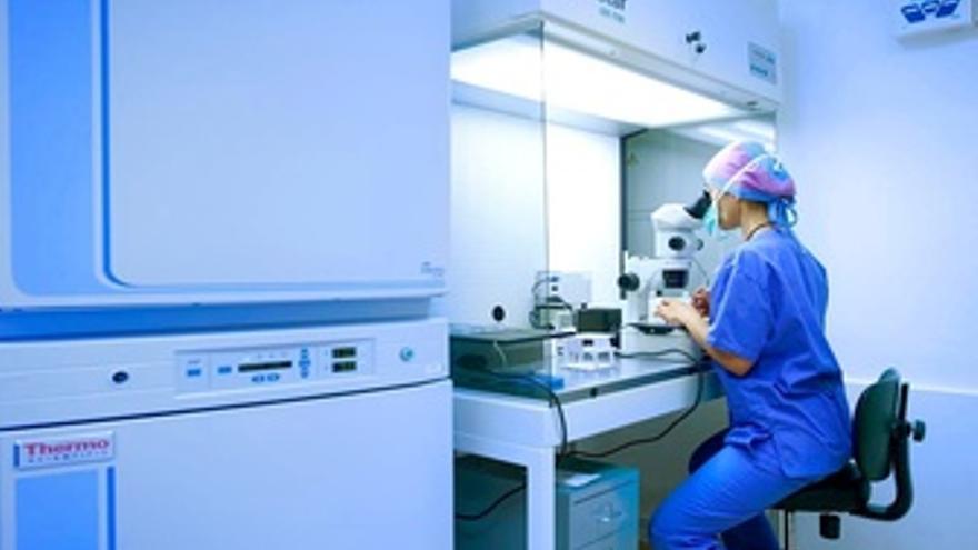 Una Investigadora En Su Laboratorio