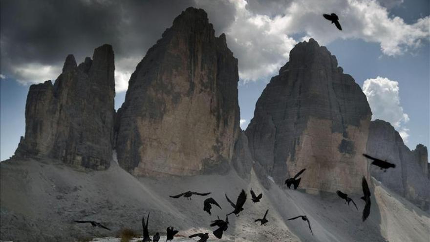 Ecoturismo fotográfico, viajar con la mirada en la naturaleza