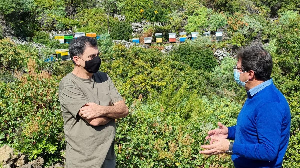 José Adrián Hernández (d), vicepresidente del Cabildo de La Palma y consejero de Agricultura, Ganadería y Pesca; y Elías González,  presidente de la Agrupación de Defensa Sanitaria (ADS) Apicultores de La Palma.