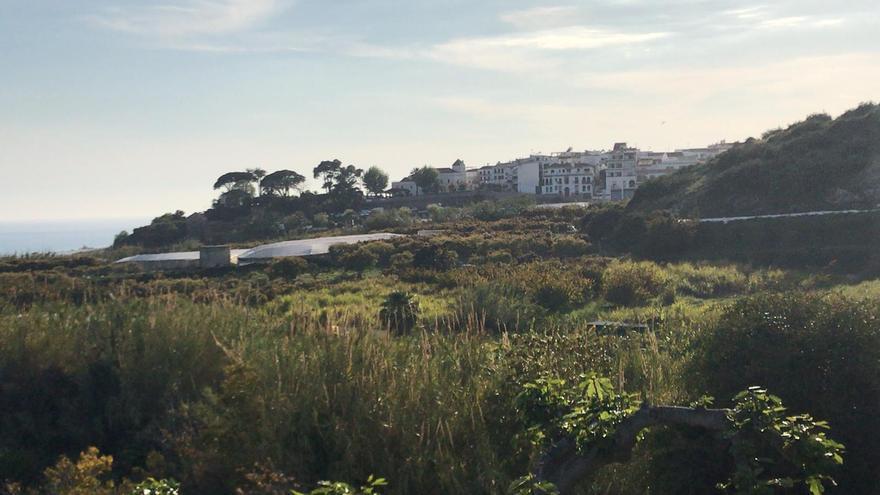 Vista del pueblo de Maro desde la parcela de un colono   Cedida por Paco Talega