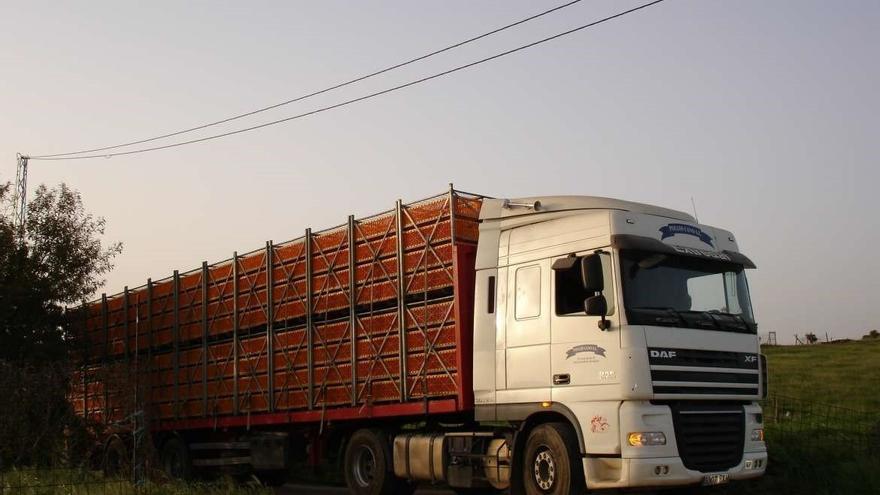 Transporte de animales. Gobierno de Extremadura