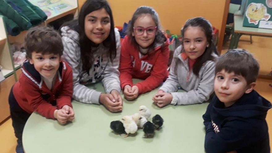Foto: Las Noticias de Cuenca
