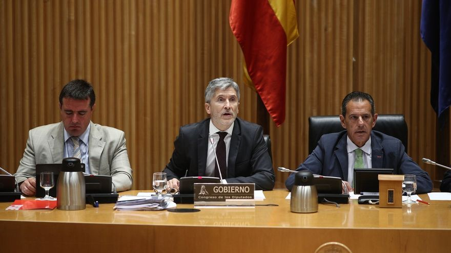 Ciudadanos pide la comparecencia de Marlaska en el Congreso para explicar la destitución del jefe de la UCO