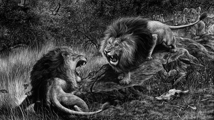 C:\fakepath\Ricardo-Martinez-167-Lions.jpg