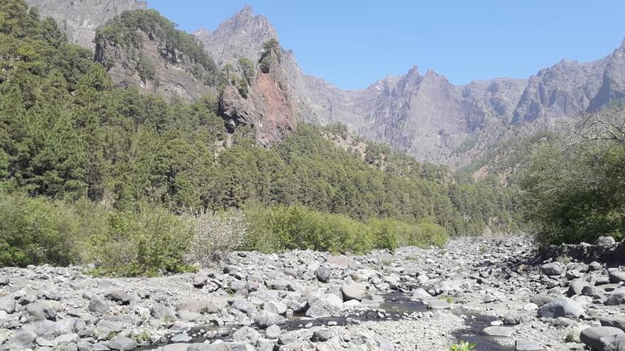 Imagen del arroyo de Taburiente, en pleno corazón del Parque Nacional de La Caldera. este lunes.