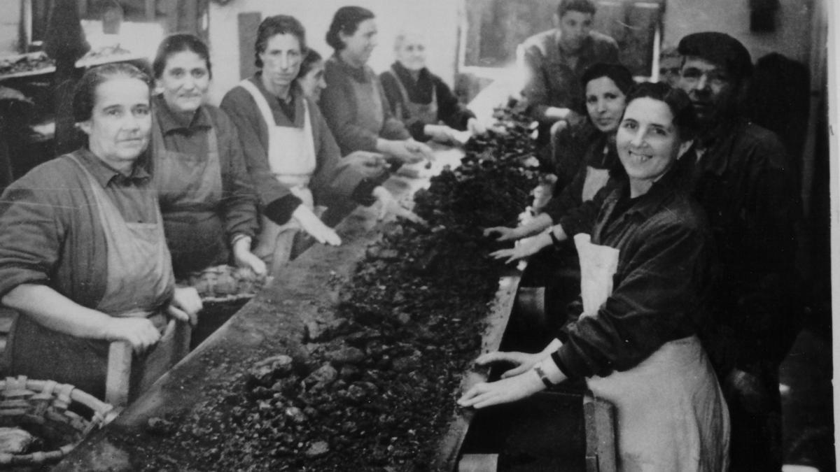 Mujeres lavando mineral en 1954