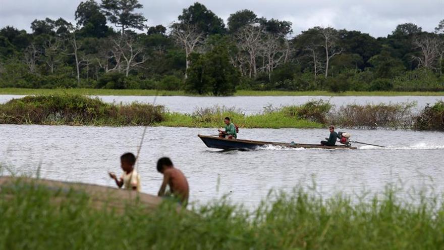 Brasil cobrará indemnizaciones a 2.300 acusados de desforestar la Amazonía
