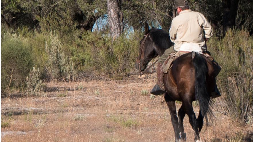 Guardería a caballo durante la búsqueda de Fran