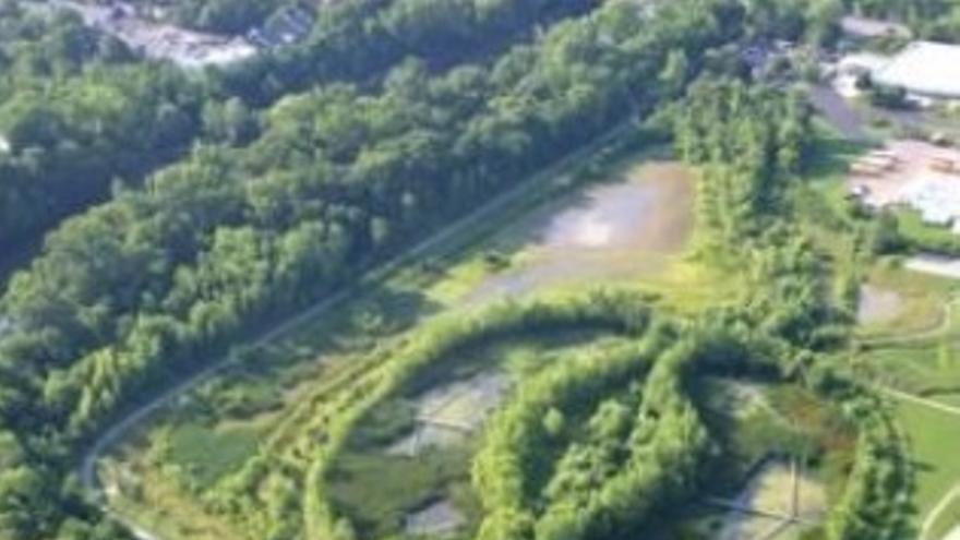 Humedal artificial en Oleontangy, en Ohio (EEUU)