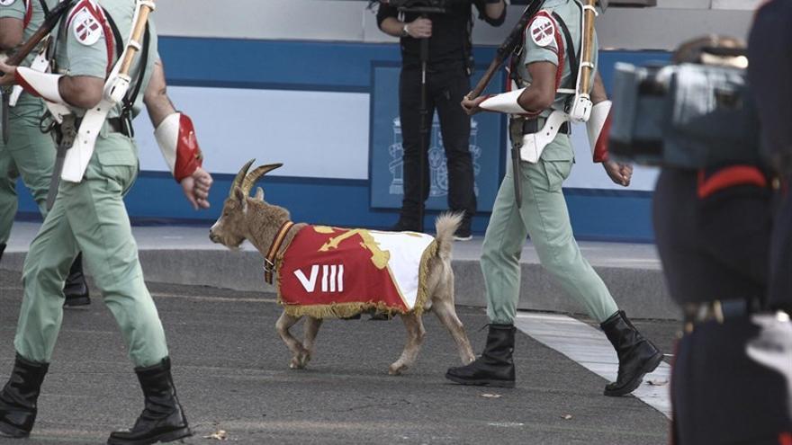 """Desfile de legionarios acompañados de la clásica """"cabra de la Legión"""" / EUROPA PRESS"""