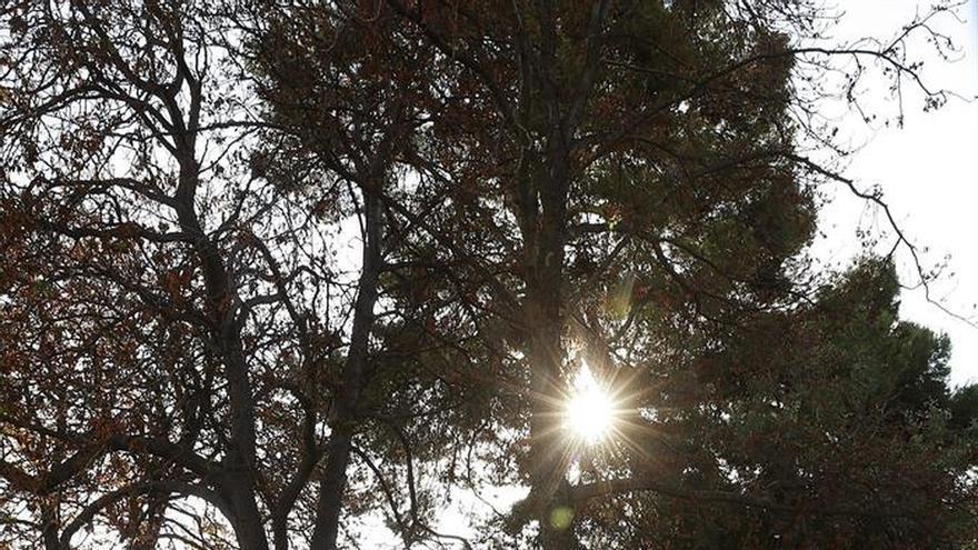 Temperaturas de más de 30 grados irrumpen en el primer fin de semana otoñal