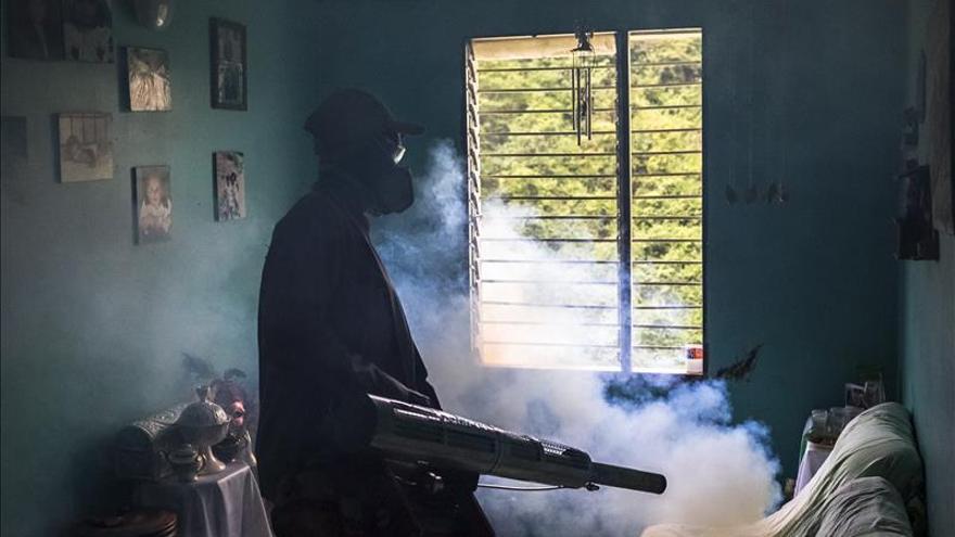 El virus del chikunguña prosigue la fase ascendente en el centro de Paraguay