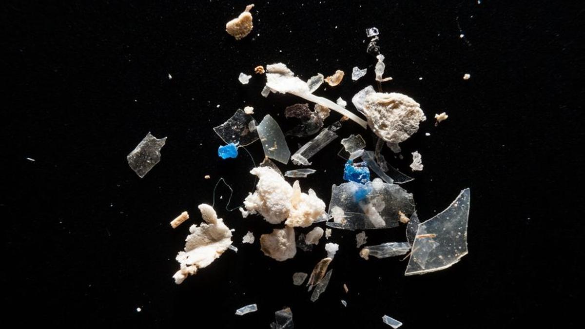 Microplásticos recogidos por el 'National Oceanic and Atmospheric Association Marine Debris' y fotografiados en laboratorio