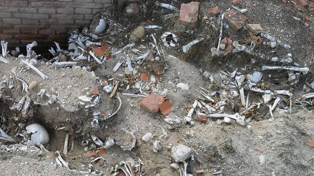 Así estaba el osario, aflorado por un movimiento de tierra, en 2018, durante la visita de los forenses de Aranzadi