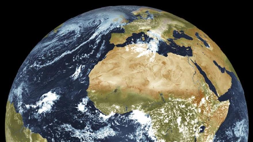 Los fósiles de Canarias reflejan el cambio climático que hizo de Europa un lugar templado