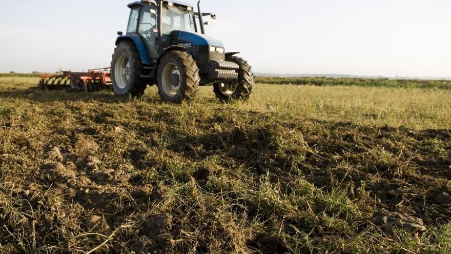 El Gobierno no recortará la partida de contratación de seguros agrarios y la mantendrá en 252,6 millones