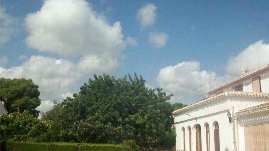 La casa Ribes, en la imagen con su algarrobo, se vería afectada de forma parcial.