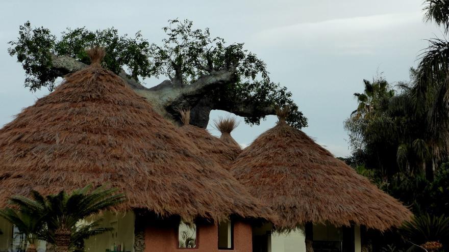 Instalaciones de Loro Parque, en Tenerife, recreando un poblado de Gambia