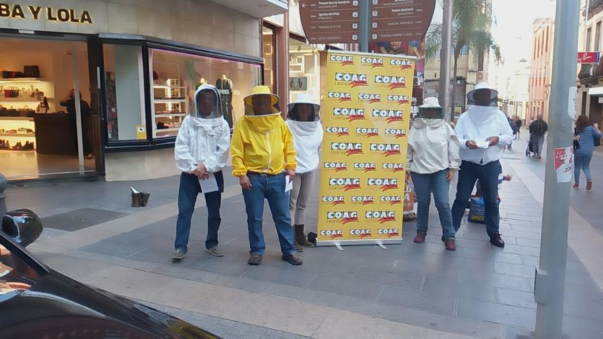 Presencia del grupo de productores canarios de mieles en la calle del Castillo, en Santa Cruz de Tenerife
