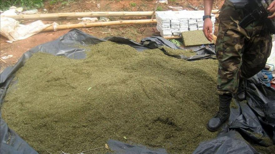 Agentes antidroga intervienen 46 toneladas de marihuana en Paraguay