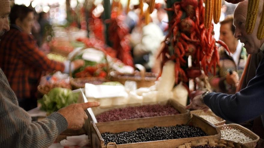 Un total de 121 reses pirenaicas optarán al primer premio en la Feria del Primer Lunes de Octubre