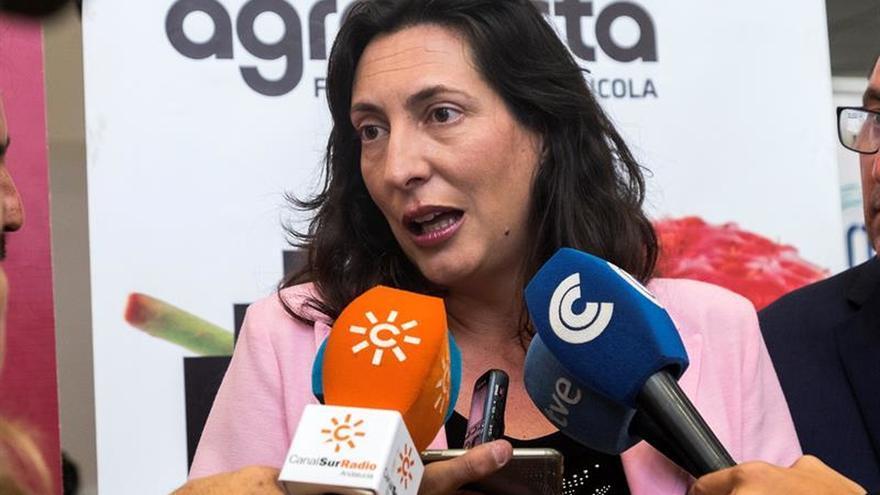 López (PP-A): Díaz, inhabilitada desde el minuto 0 para compatibilizar cargos