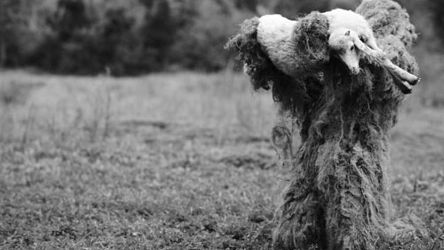 'Tres corderos', de David Pantaleón.