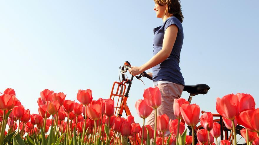 Andando en bici en Holanda